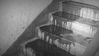смотреть фильм на ночь самые страшные истории из реальной жизни #3 крики