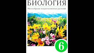 § 6 Внешнее строение листа