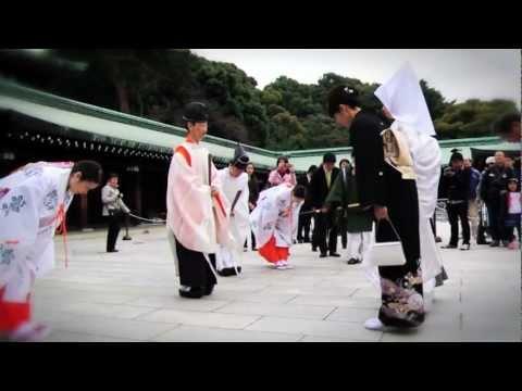 Japanese Wedding at the Meiji Shrine, Tokyo Japan : A Travel Guide