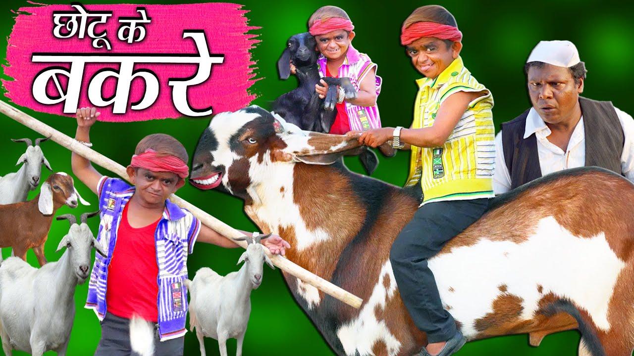 CHOTU DADA BAKREY WALA   छोटू दादा बकरे वाला   Khandesh Hindi Comedy   Chotu Dada Comedy Video