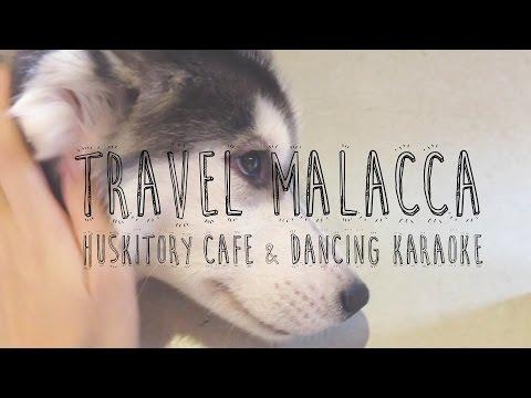 TRAVEL MALACCA! Husky cafe & karaoke!