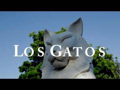 """Los Gatos, CA"" A Charming Place to Call Home"