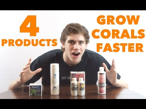 4 Products to GROW CORALS FASTER! - BioKit Reef, Fuel, Reef Energy, Coral Exponential