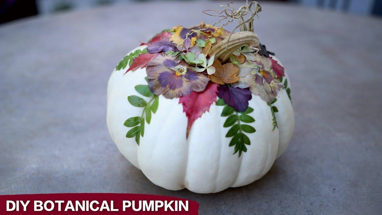DIY Botanical Pumpkins! 🌿🎃🍂 // Garden Answer