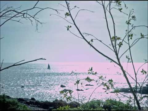 Het lied van de zee  -  Rob de Klerk
