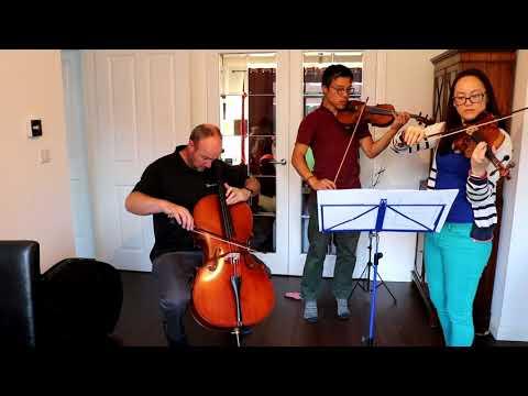 Barbers Adagio for Strings:  2 Violins & 1 Cello Rehearsal