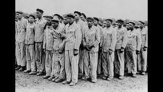 Die Wahrheit über den Holocaust, Das Jahrhundertverbrechen