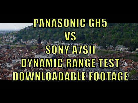 Panasonic GH5 vs Sony A7Sii: Dynamic Range Test : videography