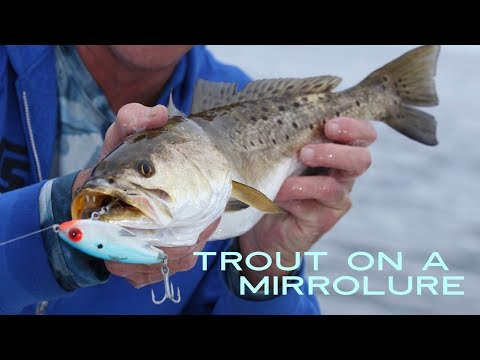 How To Catch Trout On A MirrOlure