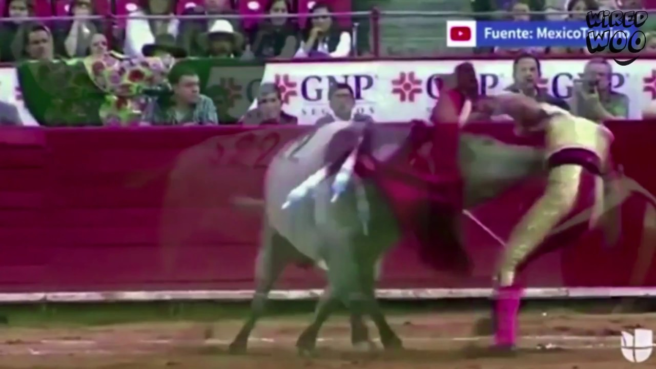 Download This Matador Suffers Horrifying Injuries After Raging Bull Spears Horn Through His Backside!