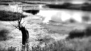 Nana Mouskouri With Gheorghe Zamfir - The Lonely Sheperd