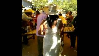 Boda en san Miguel totolapan baile d los trastes