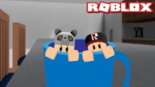 Bardağın İçine Saklandık!! Saklambaç Oynadık - Panda ile Roblox Hide and Seek Extreme