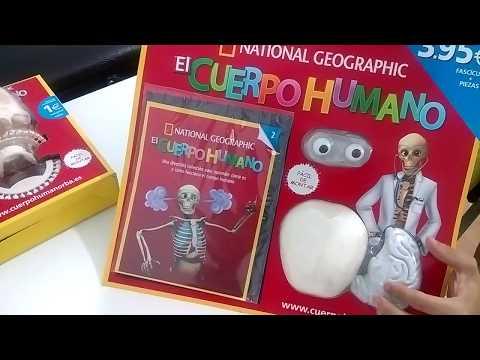 esqueleto-del-cuerpo-humano-de-national-geographic