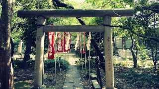 Popular Videos - Hachiman shrine