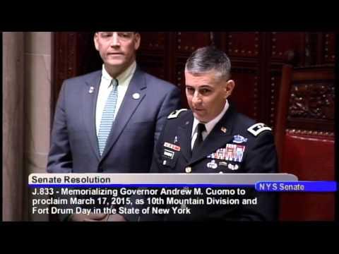 Maj. Gen. Stephen J. Townsend speaks at New York State Senate