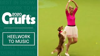 International Freestyle Heelwork To Music  Part 1 | Crufts 2020