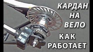 Обзор велокардана