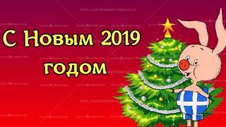Новый 2019 год. Год свиньи. Индивидуальные поздравления пол заказ