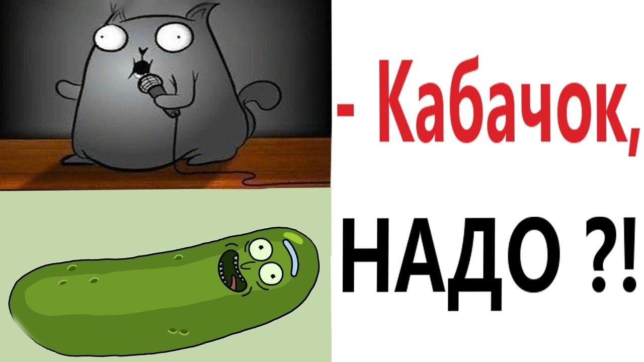 Доми шоу: КАК избавиться от кабачков?! Самые смешные истории! Мемы анимация!