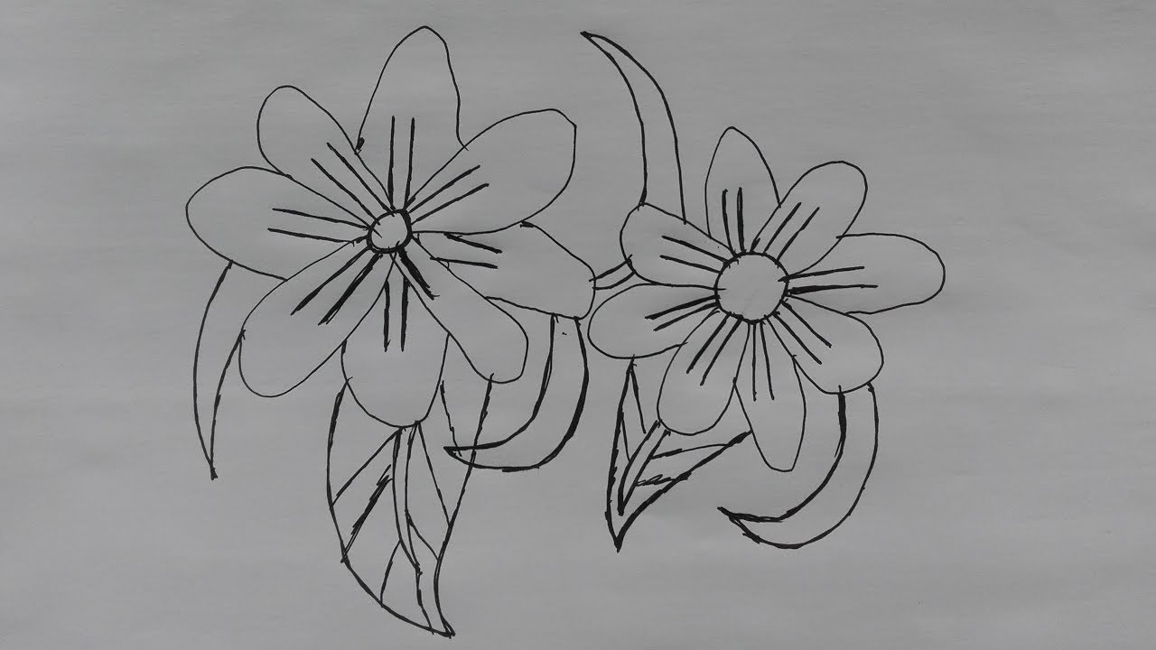 Black Line Flower Drawing : Bee and flower drawing at getdrawings free for personal use
