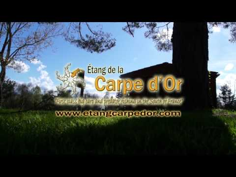 Etang Carpe d'Or Spring Session