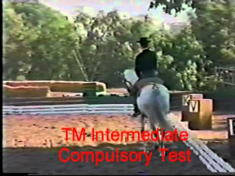 Origins of Working Equitation and Classical Dressage