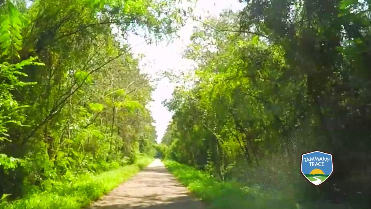 Tammany Trace Rails To Trail 27 Mile Ride Youtube