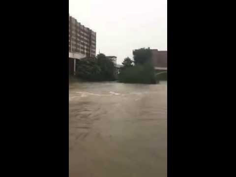 University of Houston area - houston flood 2016