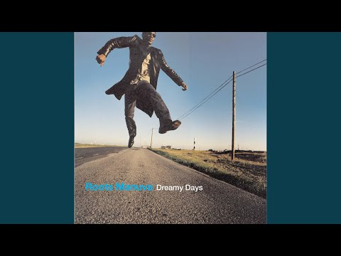 Dreamy Days (Super Furry Animals Remix)