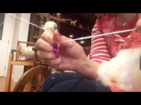 Spinning alpaca with no picking carding or combing
