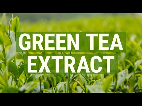 What is Green Tea Extract?