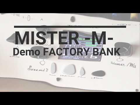 MISTER -M-  Factory Bank