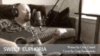 Sweet Euphoria - Chris Cornell Cover