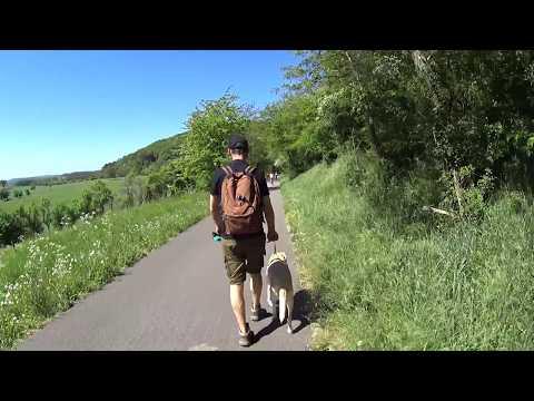 ENCONTRO com AMIGOS e TRILHA DE QUASE 10KM - LUXEMBURGO - Vlog #187