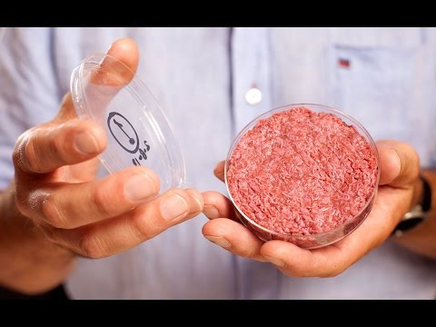 lab-grown-meat-prices-drop-by-99.997%-in-18-months
