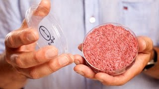 Lab Grown Meat Prices Drop By 99.997% In 18 Months