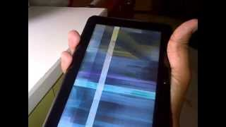 WickedLeak Wammy Desire Tablet Display  Problem