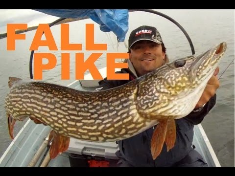 Pinehurst lake fall northern pike fishing youtube for Fremont wi fishing report