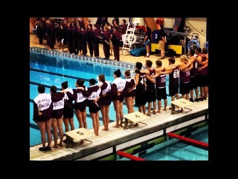 Springfield College Swimming & Diving 2013-2014