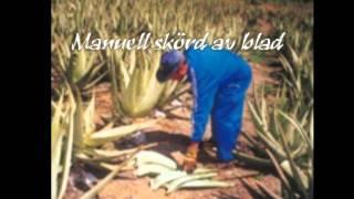 Aloe: Produktion protokoll.