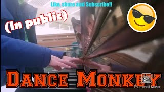 I played DANCE MONKEY on the Piano in Public!!!