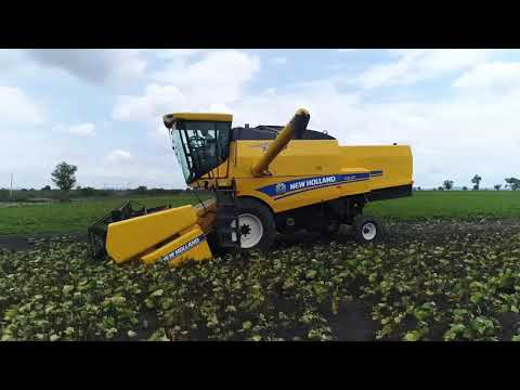 New Holland Agriculture Combine Harvester's Record Breaking Performance