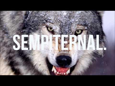 David Guetta feat SIA - She Wolf (DJ Toussels Remix) FREE