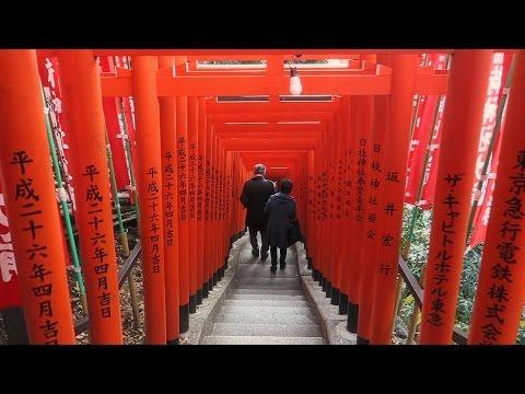 Temples and Shrines in Tokyo, Nikko and Kamakura