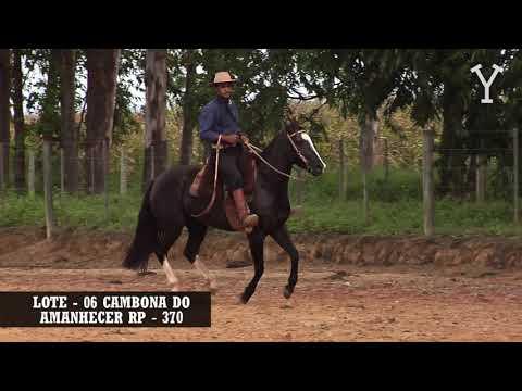 LOTE   06 CAMBONA DO AMANHECER RP   370
