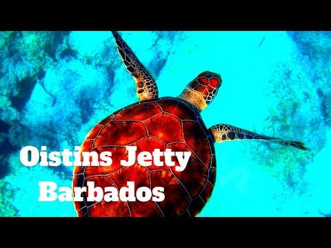 OISTINS JETTY | BY DAY | BARBADOS