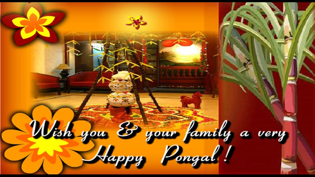 Happy Pongal 2017 Latest Wishes Greetings Whatsapp Video E Card
