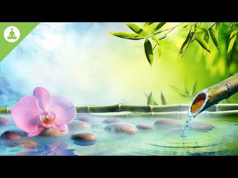 Soft Calm Meditation Music, Peaceful Music, Stress Relief, Nature Sounds