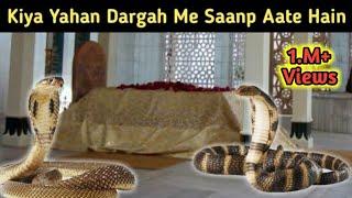 Is Dargah Ki Karte Hain Khidmat 2 Saanp ( Snakes ) Zinda Karamat | Fakeer Shah Baba | Mudassir Noori